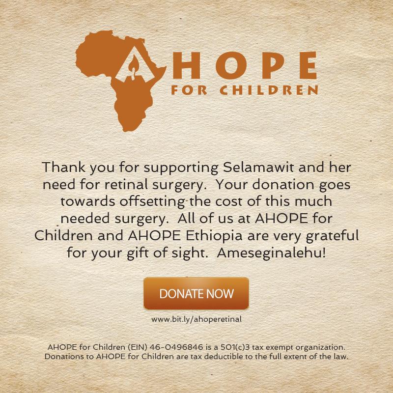 Selamawit Retinal Surgery Fund
